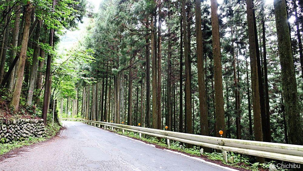 三峯神社への道