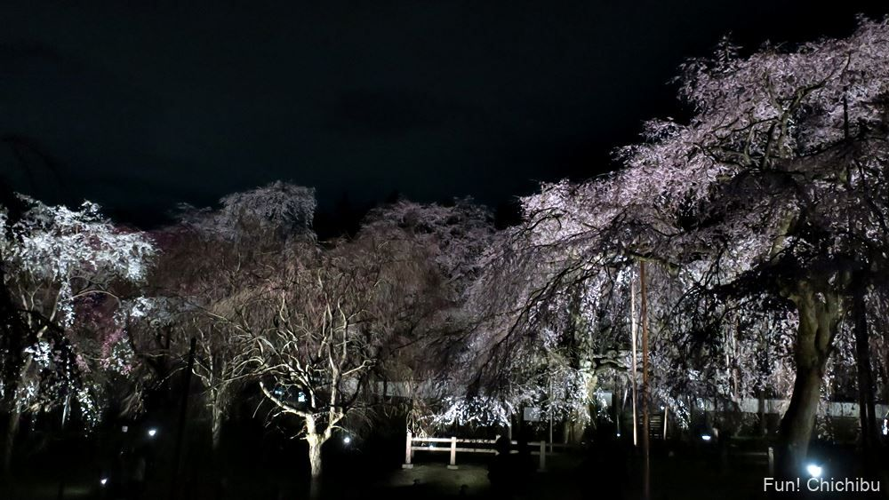 清雲寺のライトアップ
