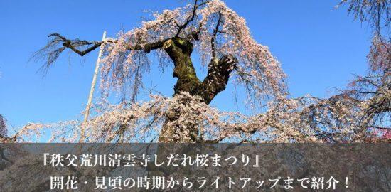 『秩父荒川清雲寺しだれ桜まつり』開花・見頃の時期からライトアップまで紹介!