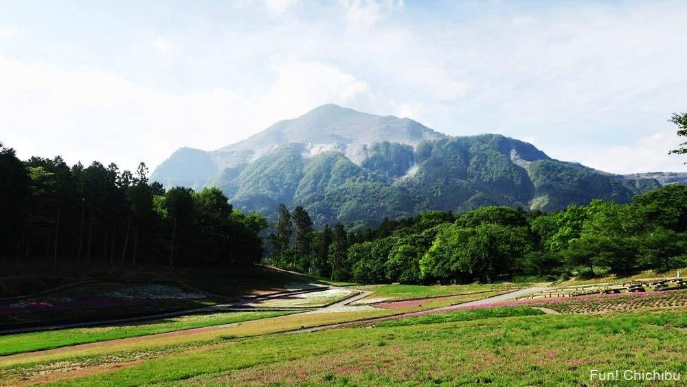 秩父芝桜の丘20190518