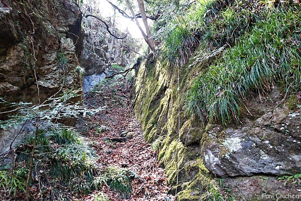 和銅遺跡露天掘り跡