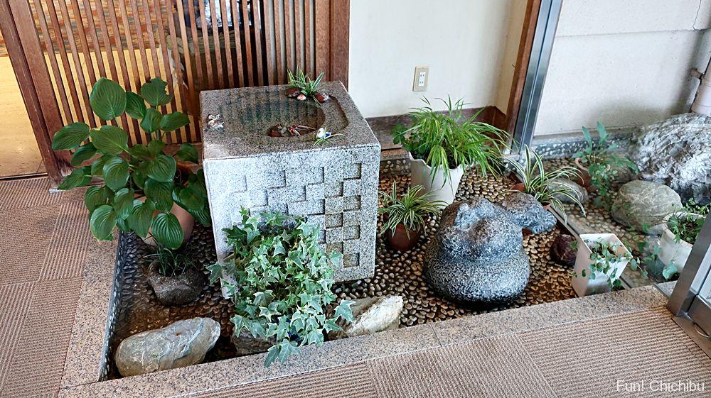 長生館入り口付近の植物