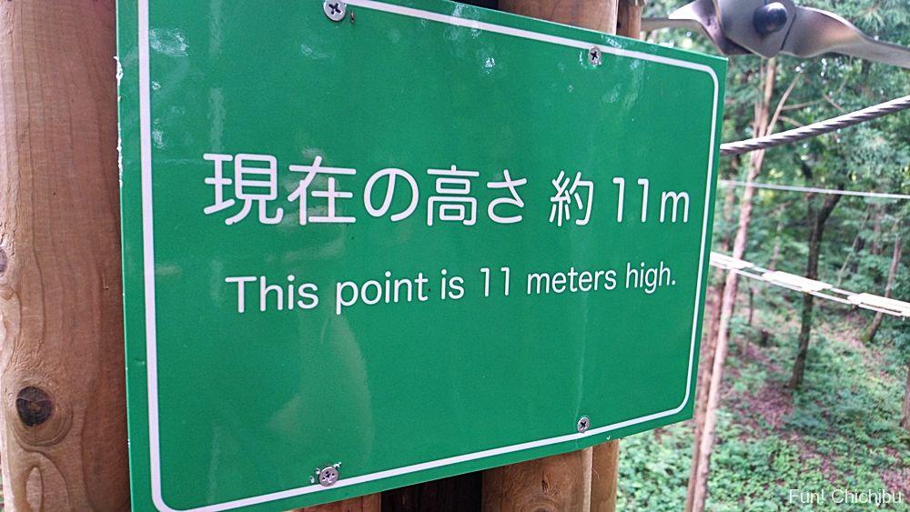 高さ11m