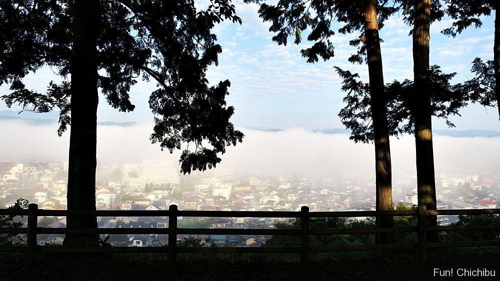 見晴らしの丘の雲海