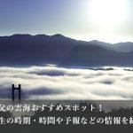 ミューズパーク展望台からの雲海