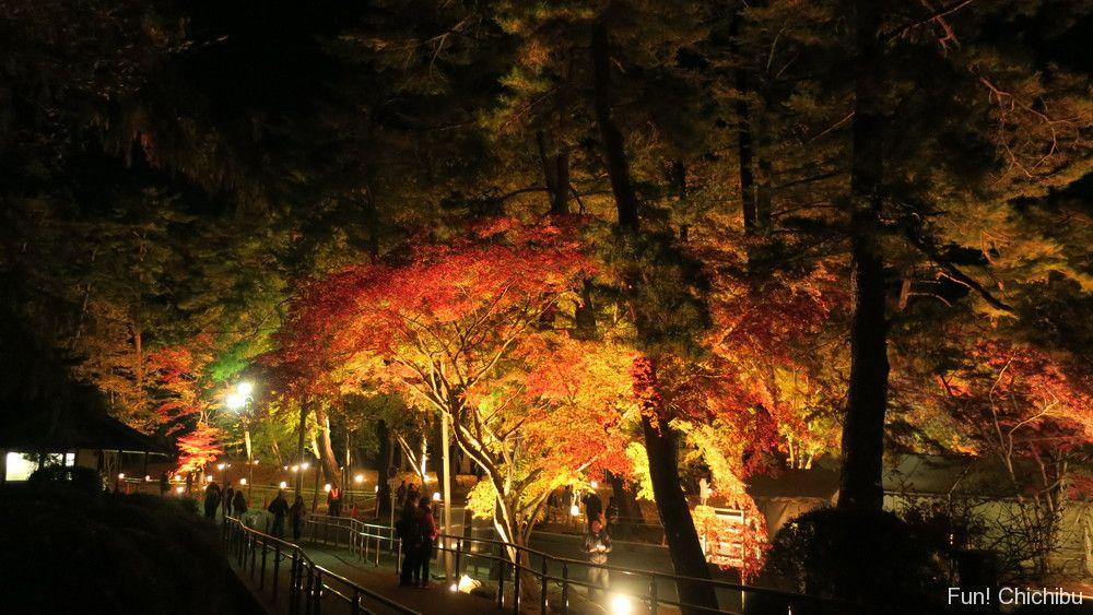 月の石もみじ公園のライトアップ
