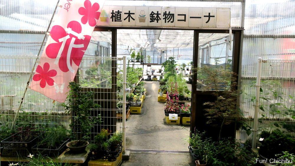 道の駅みなの農産物直売所の植木・鉢物コーナー