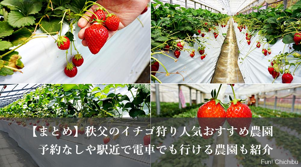 秩父のイチゴ狩り人気おすすめ5選!予約なしや駅近で電車でも行ける農園も紹介
