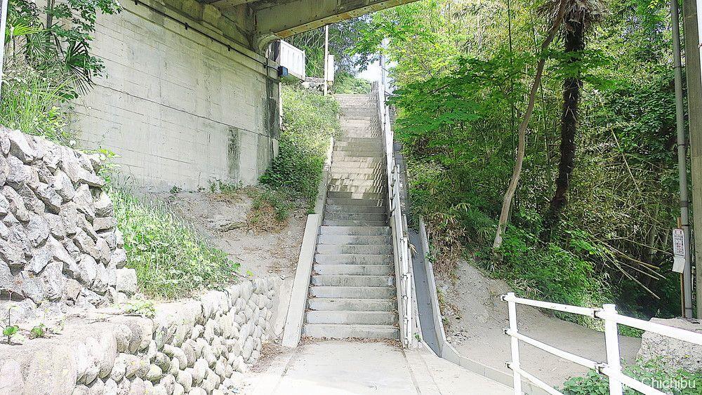 あの花 旧秩父橋階段下1