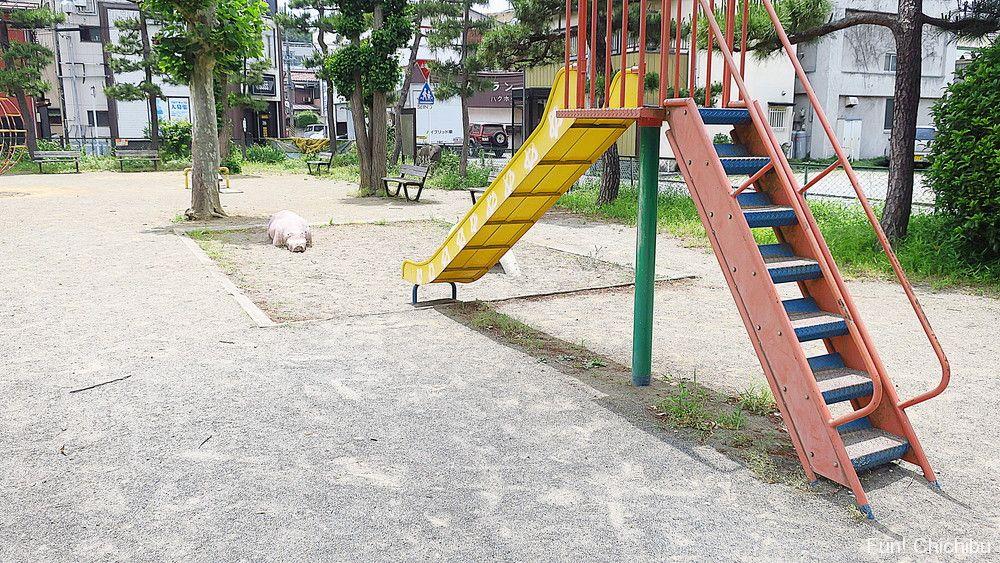 あの花 宮側児童公園