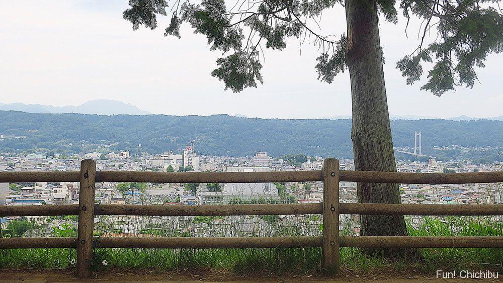あの花 羊山公園の見晴らしの丘