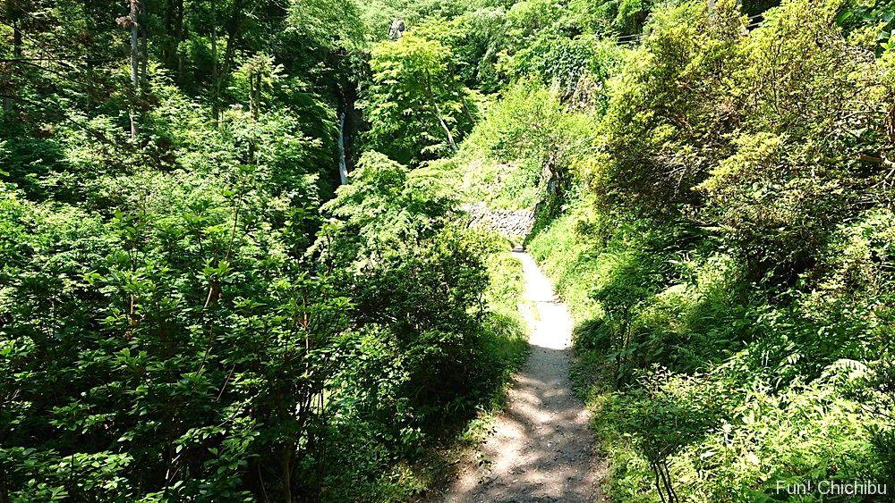 華厳の滝経路2