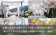 長瀞のおすすめ桜スポット4選!「通り抜けの桜」や「桜のトンネル」と呼ばれる桜並木など開花の時期から見頃まで紹介