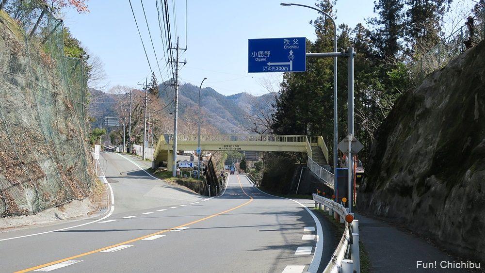 秩父ジオグラビティパークの隣にある歩道橋