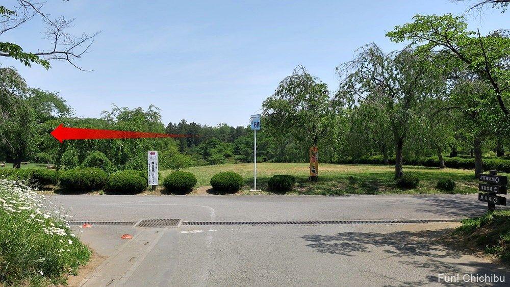 琴平ハイキングコース 芝桜の丘入口