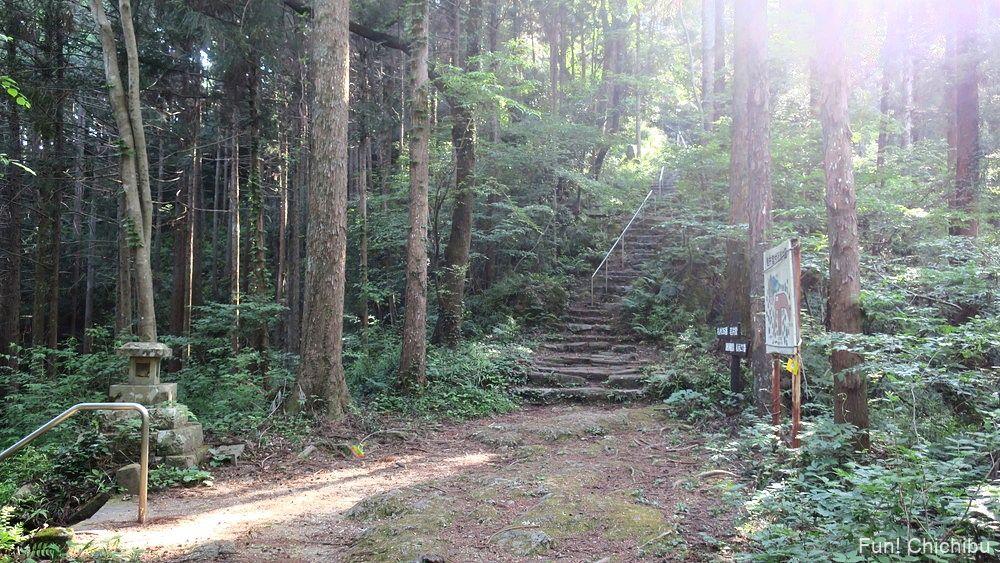 琴平ハイキングコース 岩井堂付近の分岐点