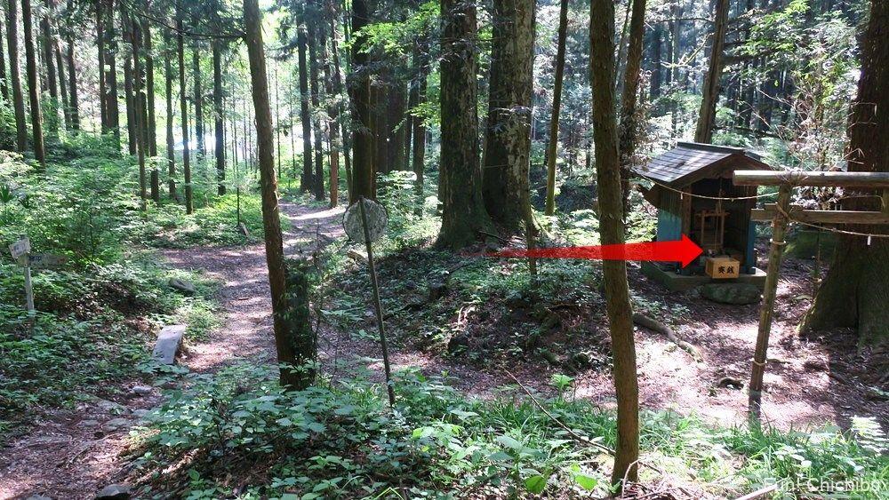 琴平ハイキングコース 武甲山登山口の碑付近の鳥居