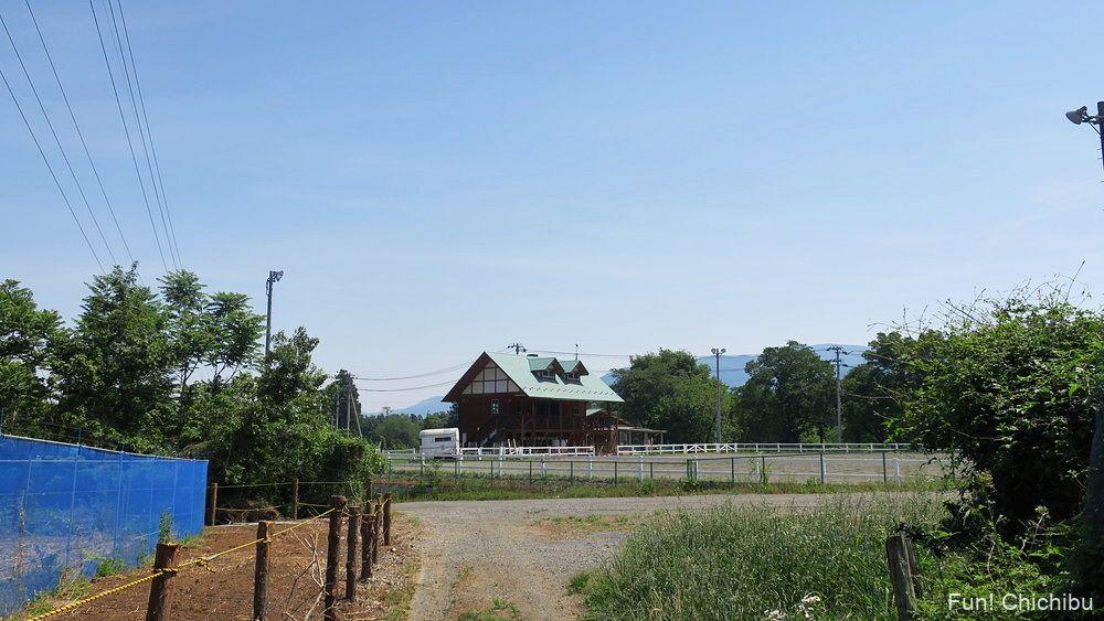 琴平ハイキングコース 芝桜の丘付近