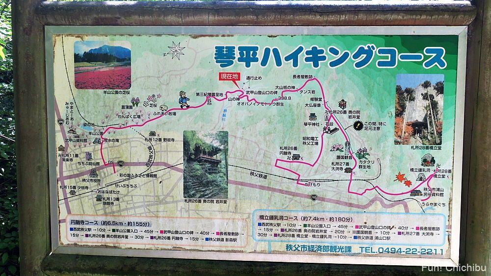 琴平ハイキングコースの地図