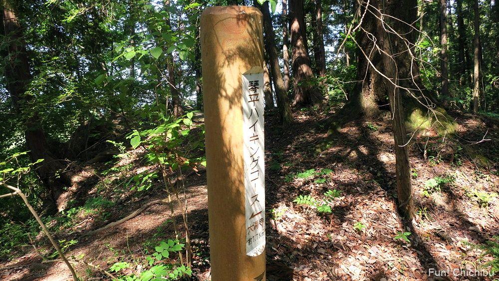 琴平ハイキングコース 武甲山登山口の碑付近の目印