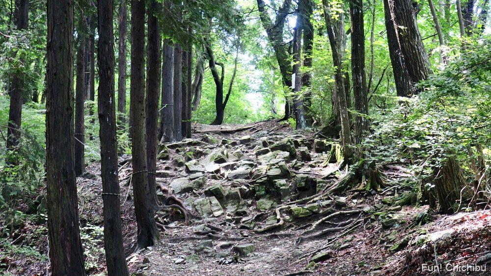 長瀞アルプス宝登山 山頂付近の岩場