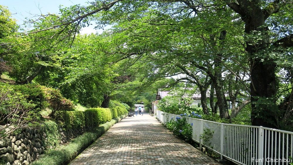 長瀞アルプス宝登山 宝登山山頂駅前の歩道