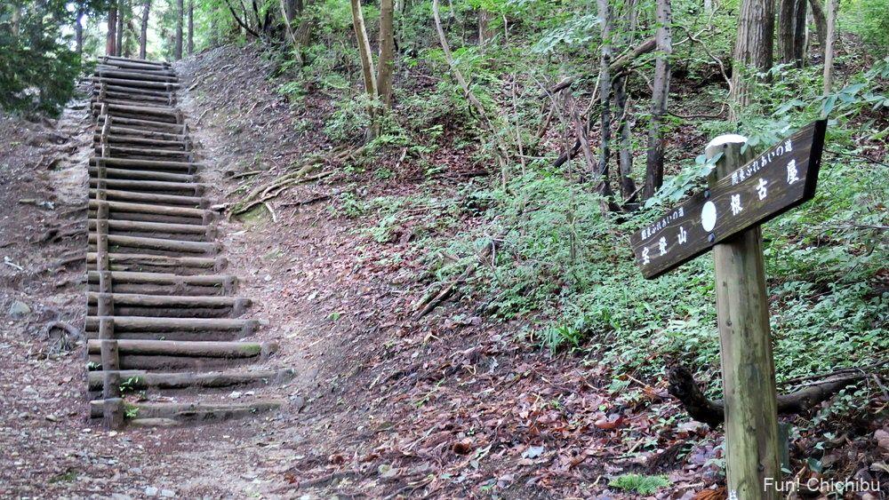 長瀞アルプス宝登山 木段3