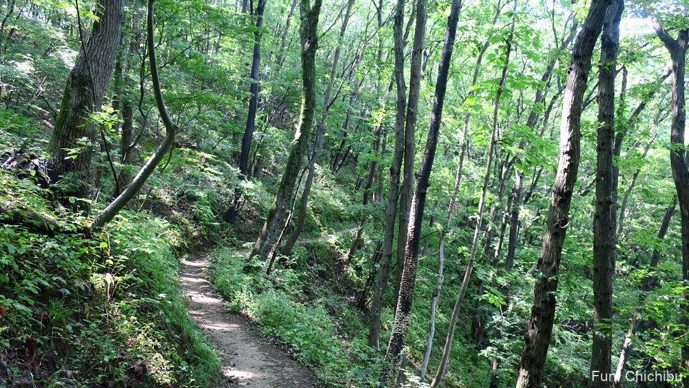 長瀞アルプス宝登山 坊山分岐(ぼうやまぶんき)付近の急斜面