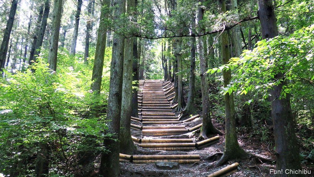 長瀞アルプス宝登山 木段2