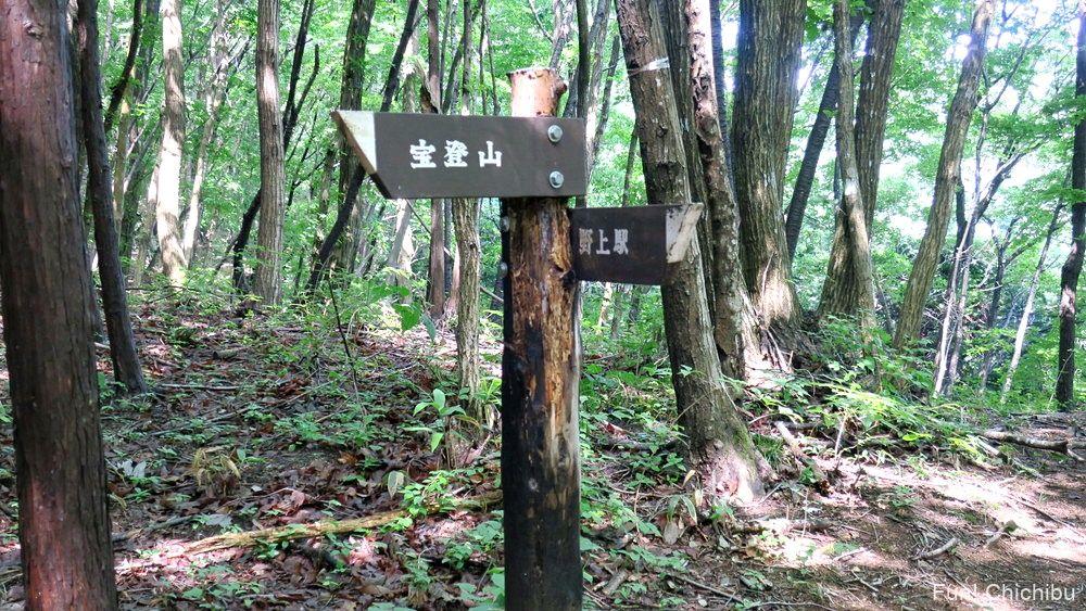 長瀞アルプス宝登山 氷池分岐へ向かう途中の標識2