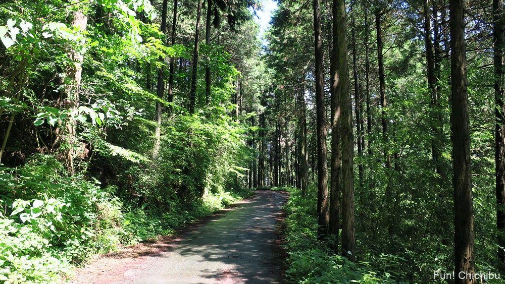長瀞アルプス宝登山 山頂へ向かう途中の舗装の道
