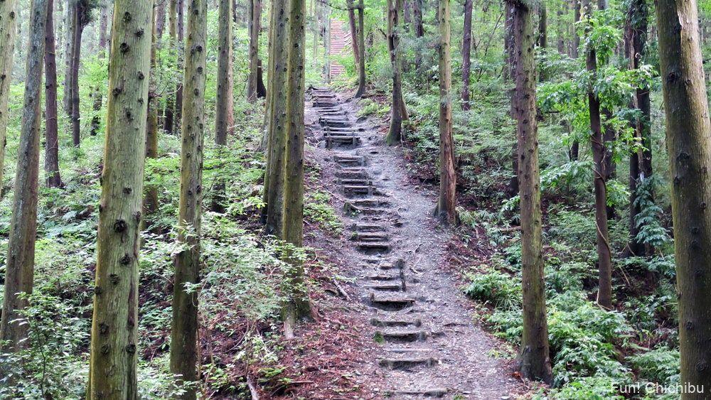 長瀞アルプス宝登山 木段1