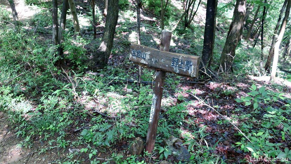 長瀞アルプス宝登山 氷池分岐へ向かう途中の標識1