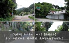 『定峰峠』おすすめコース!ジブリトトロの苔アート、峠の茶屋、鬼うどんなどを紹介!【動画あり】