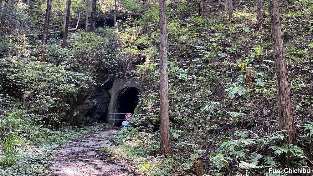 空の青さを知る人よ 聖地 荒川日野人道トンネル前2