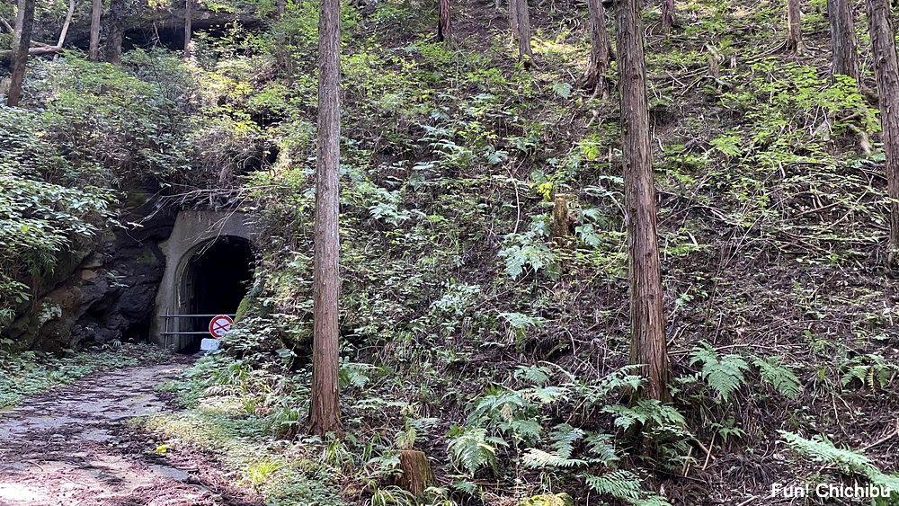 空の青さを知る人よ 聖地 荒川日野人道トンネル前1