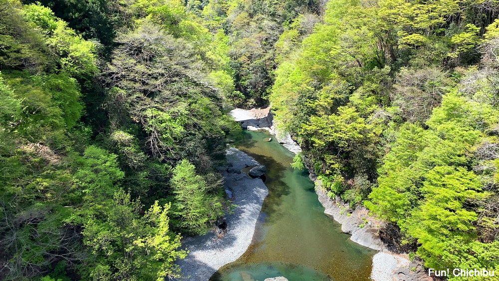 秩父ジオグラビティパーク キャニオンバンジー デッキからの眺め(荒川渓谷)